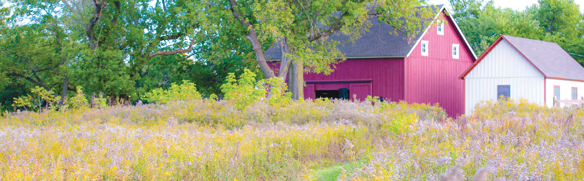 Red barn at the corner of a forest and prairie.